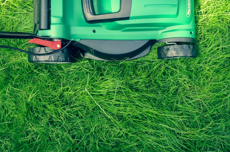 A photo of a lawnmower on some grass.